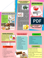 Leaflet Hiperlipidemia Oca