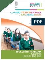 Ruta de Mejora Escolar 2017-2018