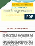 Derecho Procesal Constitucional II Completo