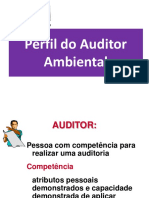 Aula 09 Pefil Do Auditor