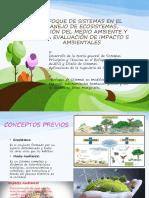 307883666 Enfoque de Sistemas en El Manejo de Ecosistemas