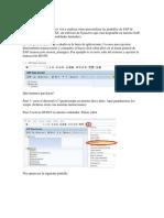 Personalizando SAP