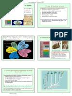 10_plantasterrestres_diapos.pdf.pdf