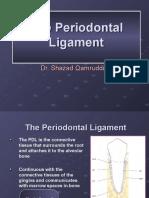 PDL Ligaments