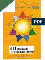 011_Desarolllo_Multicultural_Integral_P3000_2013.pdf