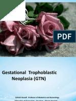 (GTN)class