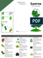tree id brochure