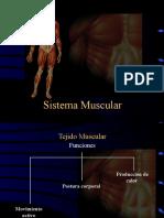 5A Anatomia Sistema Muscular