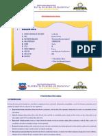 programacion anual 4TO GRADO° - comunicación