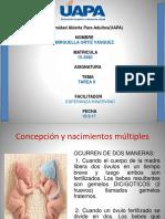TAREA II PSICOLOGIA DEL DESAROLLO 1.pptx