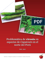 Problematica de Virosis en Especies de pimiento  morron