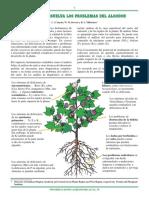Conozca+y+Resuelva+los+Problemas+del+Algodón.pdf