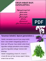 Tanaman Obat Dan Manfaatnya (1)