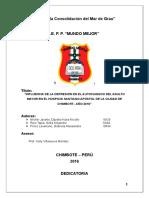 PÁGINAS PRELIMINARES(2).docx