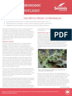 CGMM of Watermelon Seminis
