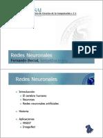 N1 Neural Networks.pdf