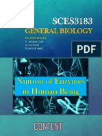 SCES3183 Nutrition for Human's Enzymes
