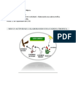 MII-U3- Actividad 2. Elaborando Una Cadena Trófica