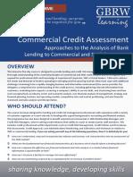 Commercial+Credit+Risk+Assessment