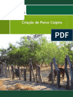 folder porco caipira intranet.pdf