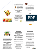 61007104 Alimentacion Saludable Triptico