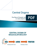 Central_Dogma_3rd_lecture.pptx