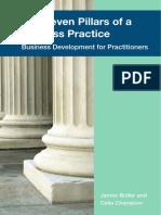 Seven Pillars of a Painless Practice book.pdf