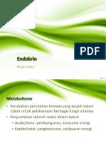 anfis-endokrin-171013-140421200929-phpapp02.pptx