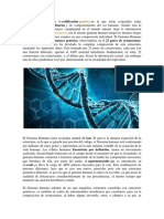 El genoma humano.docx