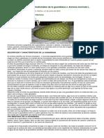 Propiedades Nutritivas y Medicinales de La Guanábana o