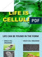 Biology Life is Cellular Power Point-2