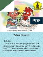 Varicela iftan