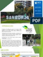 Du1- San Borja