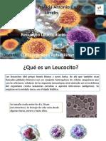 clase modelo inmunologia.pptx