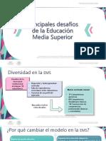 Principales desafíos_EMS (1).pdf