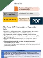 Mekanisme Transkripsi Pada Eukariot