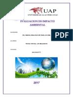 ISO 14000,ISO 9000, TRATADO DE KIOTO, PROBLEMAS AMBIENTALES