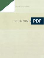 Hernán Troncoso Larronde - Los Bienes