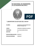 ESTUDIO DE VAPOR.docx