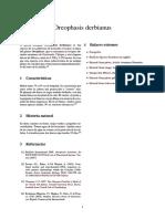 Oreophasis derbianus
