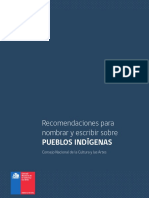 Lenguaje Pueblos Originarios
