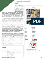 Perro-Canis Lupus Familiaris