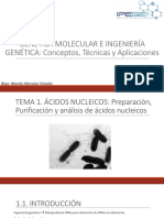 Tema 1. Genetica Molecular e Ingenieria Genetica