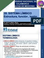 28-SistemaLímbico-2016