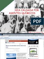 Agentes Químicos-FML 2010