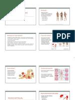 1 Histologia Tecido Epitelial 2015 Vrma