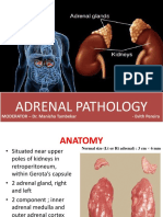 adrenalpathology