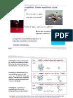 Fenomenos_de_superficie_Tension_superficial.pdf