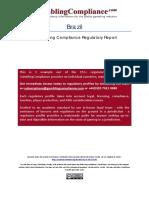 Informe Brazil