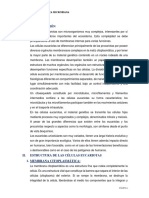 Célula Eucariota-fisio y genetica bacteriana.docx